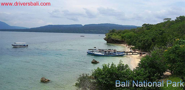 bali west national park